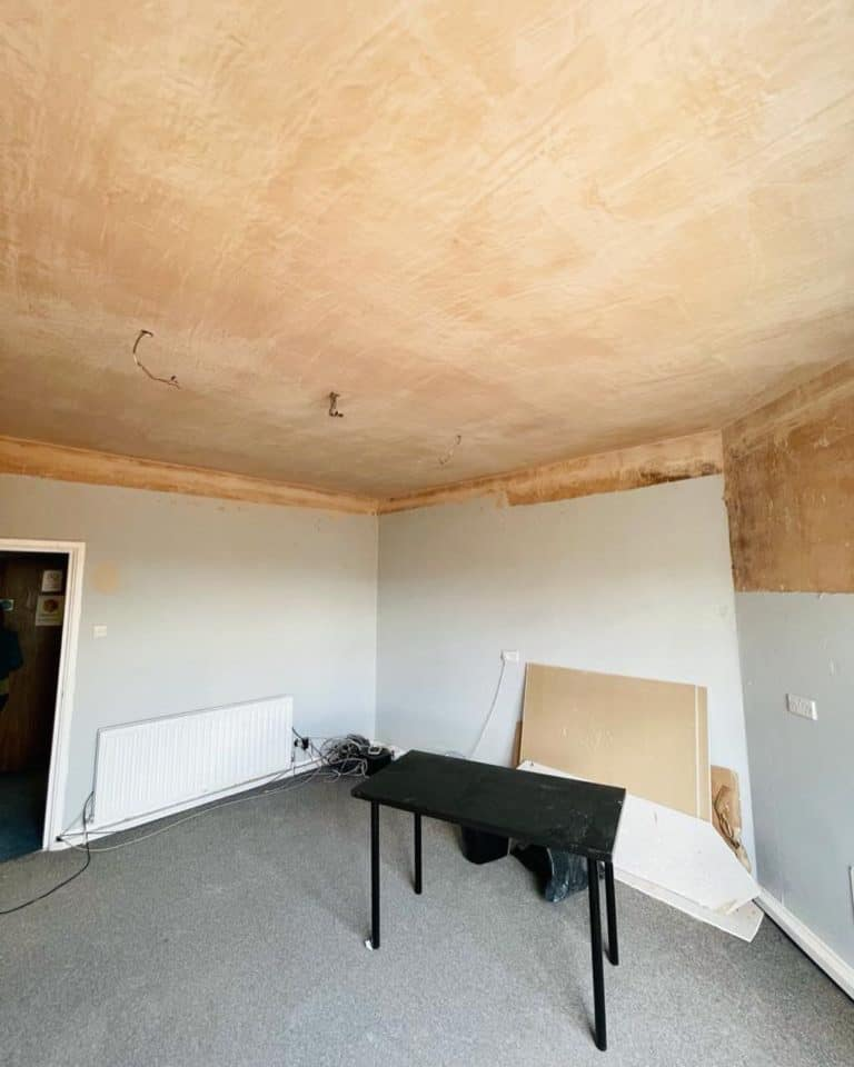 new joists and ceiling 2